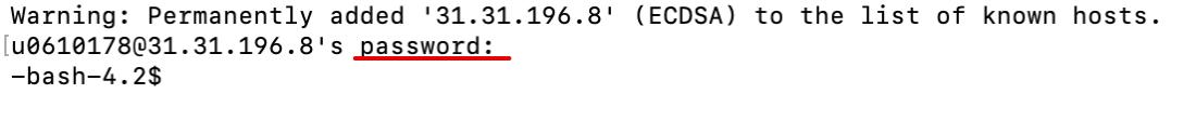 Как зайти по SSH на macOS 2