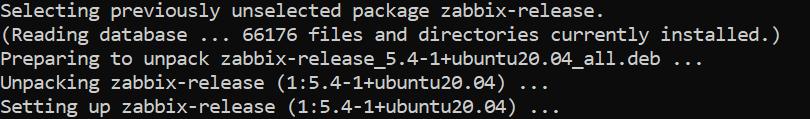 Результат успешной установки пакета Zabbix в терминале