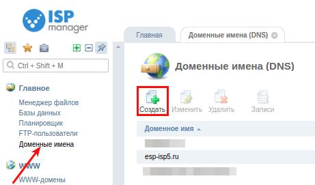 добавить домен ispmanager5 1
