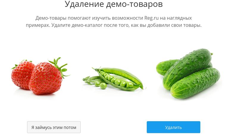 добавление магазина ecwid в конструкторе reg.ru 16