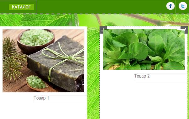 добавление магазина на сайт в конструкторе reg.ru шаг 1