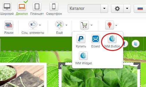 добавление магазина на сайт в конструкторе reg.ru шаг 3