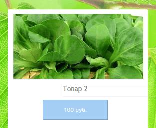 добавление магазина на сайт в конструкторе reg.ru шаг 6