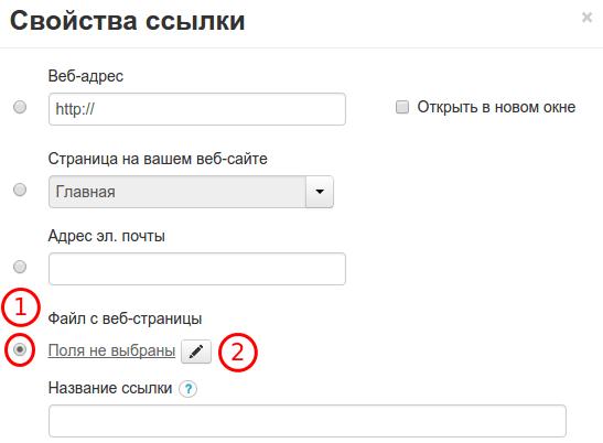 размещение файла на скачивание в конструкторе reg.ru шаг 3