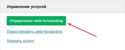настройка web-форвардинг 6