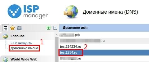 удаление записей dns в ispmanager