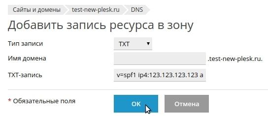 добавление txt записи в plesk onyx 17