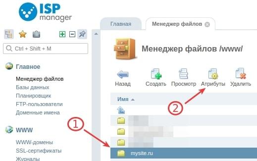 как сменить папку сайта isp5 1
