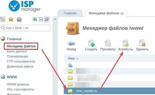 Что такое корень сайта на хостинге хостинг с php и mysql
