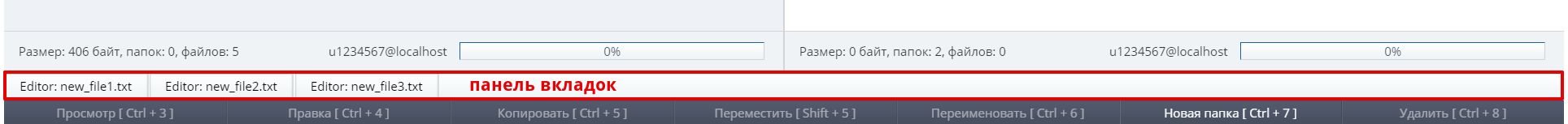 файловый менеджер sprutio 16