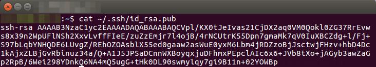 ssh_key_cloudvps_2