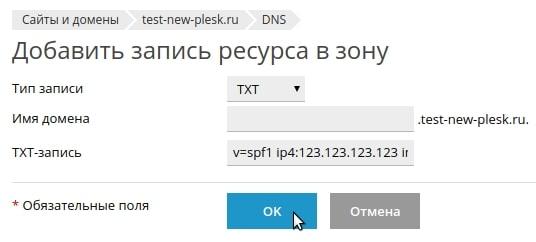 добавить запись txt в plesk onyx 17