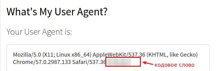 как установить user agent в cms 8